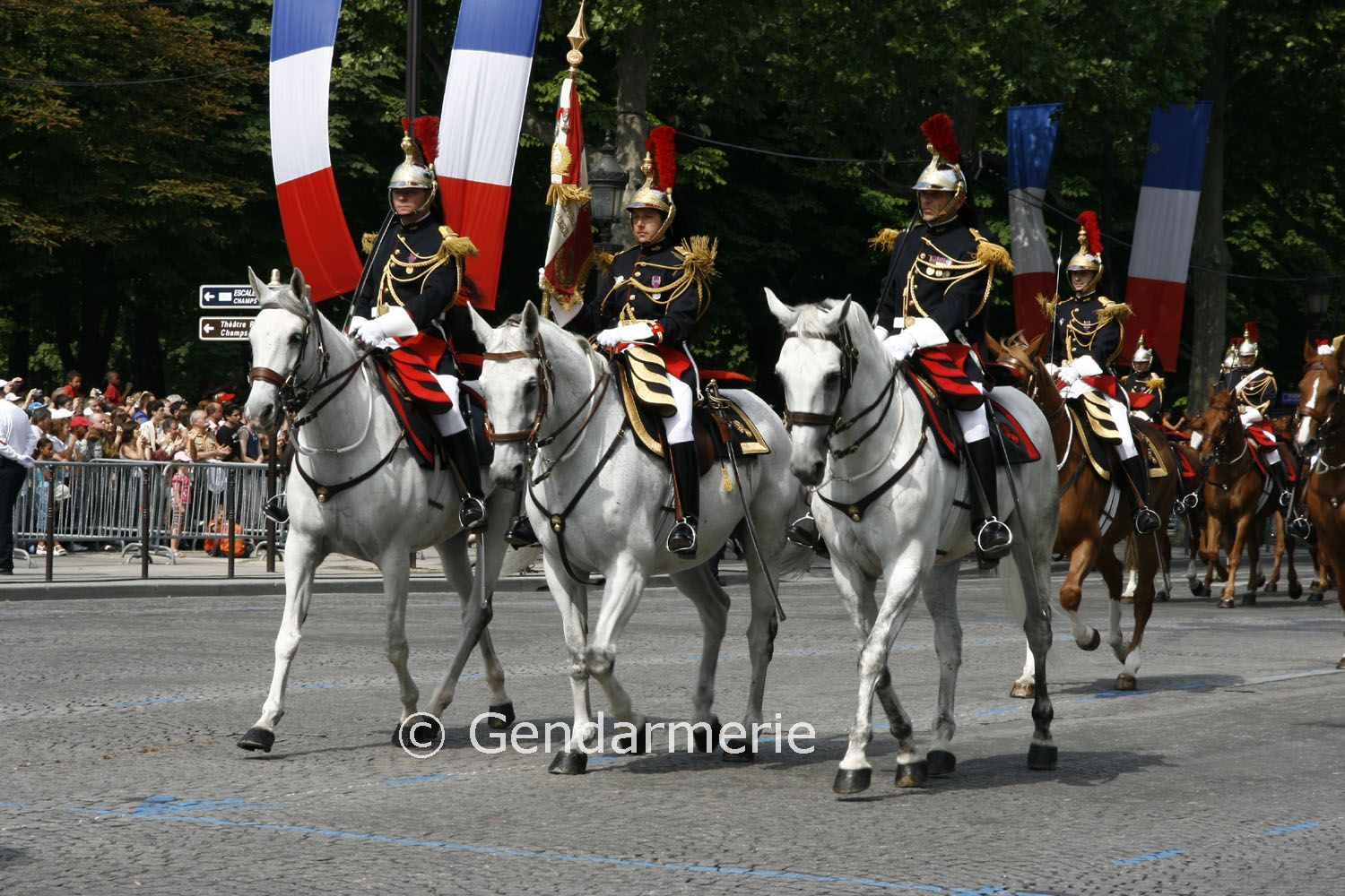bastille day parade in paris 2009